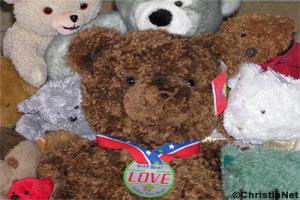 Wild and Ferocious Teddy Bear